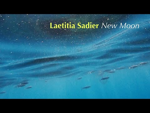 Stereolab's Lætitia Sadier returns with dreamy new offering 'New Moon'